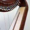 Caribbean rosewood trim on curly cherry w/georgian cherry stain harp